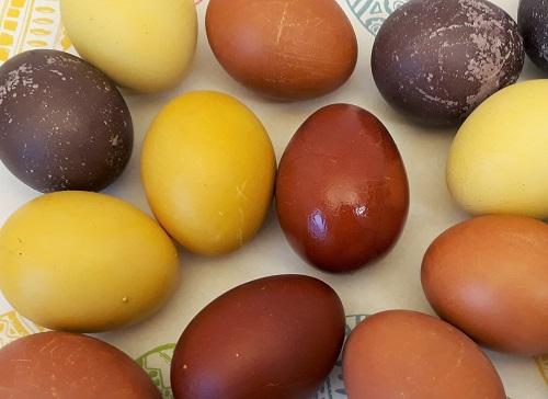 Bunte Eier für Ostern natürlich gefärbt