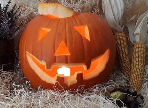 Halloween – Kürbis schnitzen